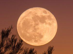 GSC Meditation för fullmåne